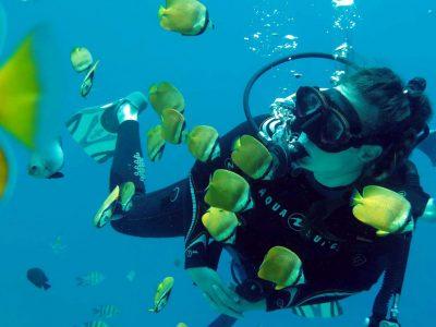 EastAfricaDiving_Zanzibar_reefdivingphotos_3287