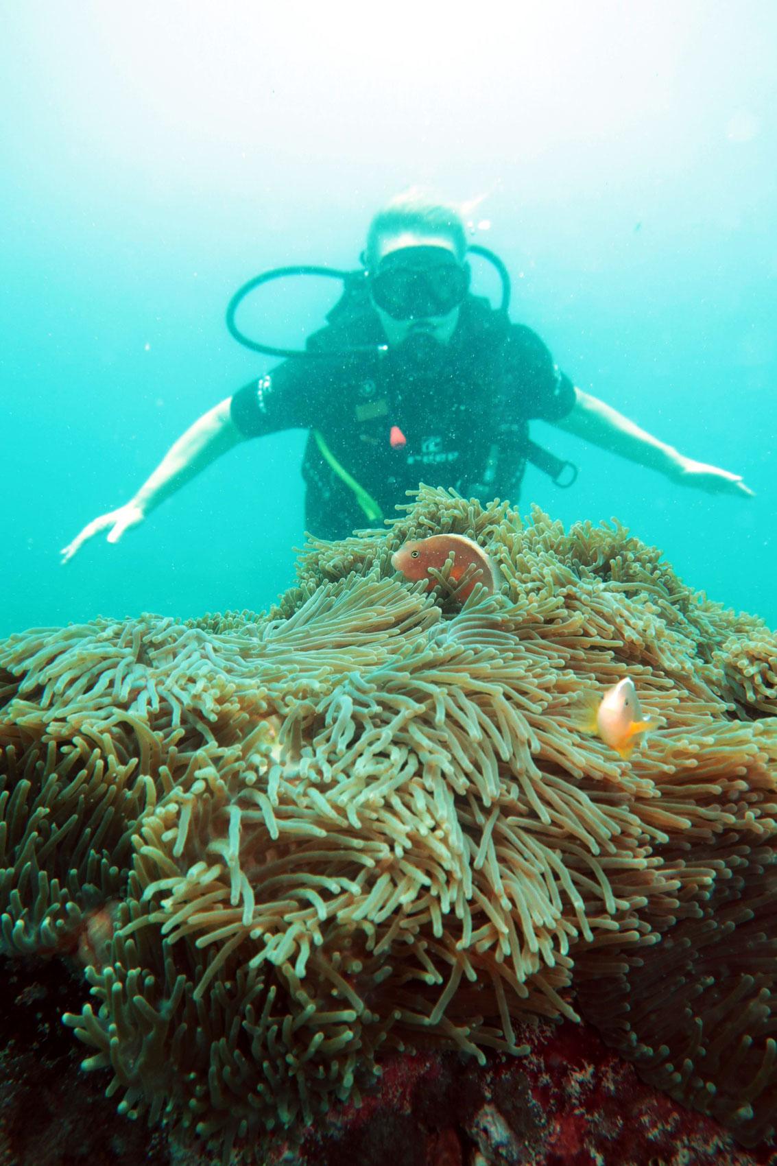 EastAfricaDiving_Zanzibar_reefdivingphotos_2948
