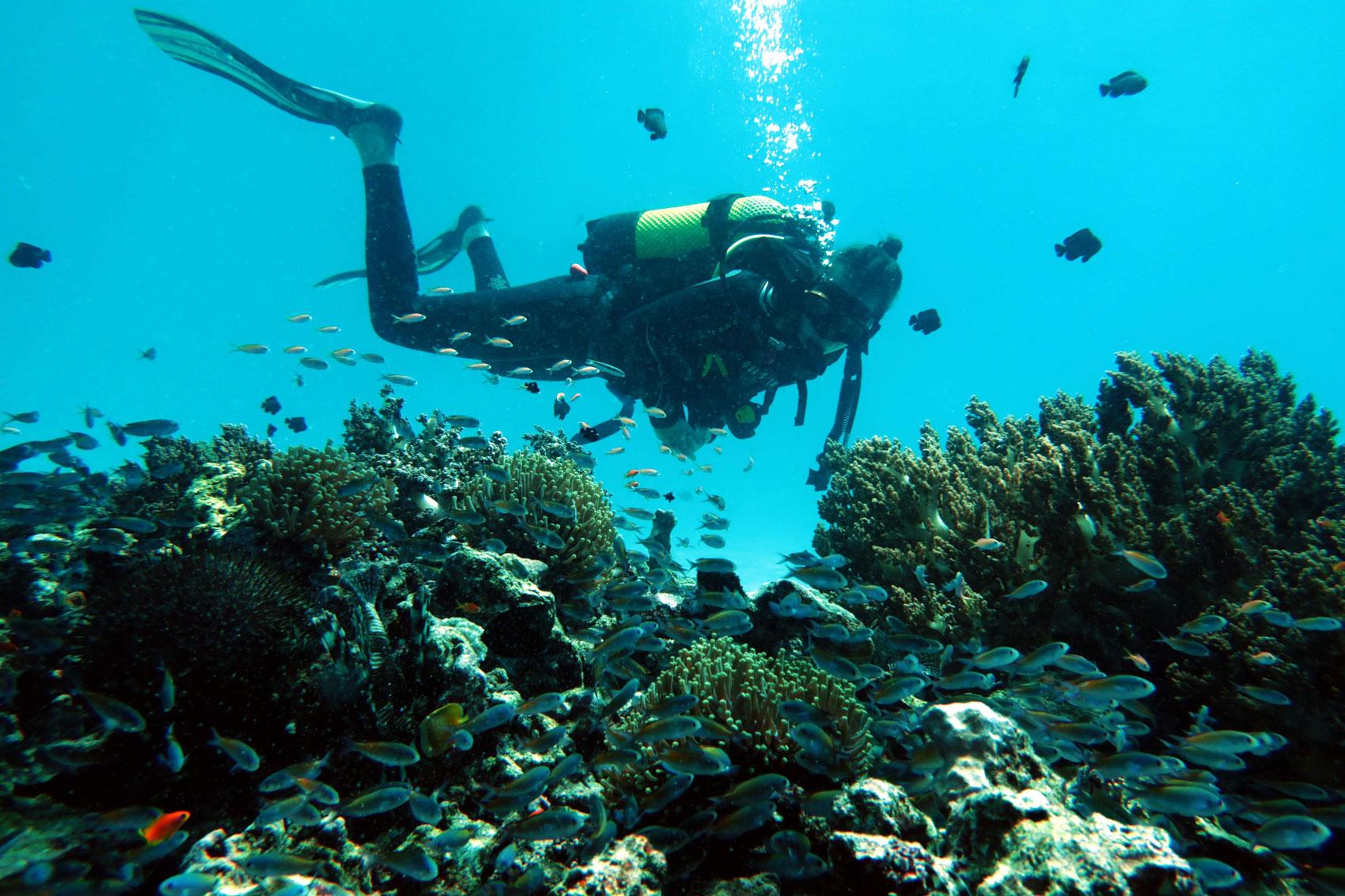 EastAfricaDiving_Zanzibar_reefdivingphotos_3157
